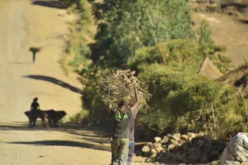 Road outside Lalibela